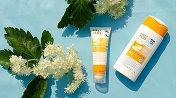 Sunscreens blog